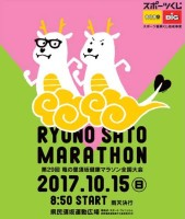 29marathon_poster